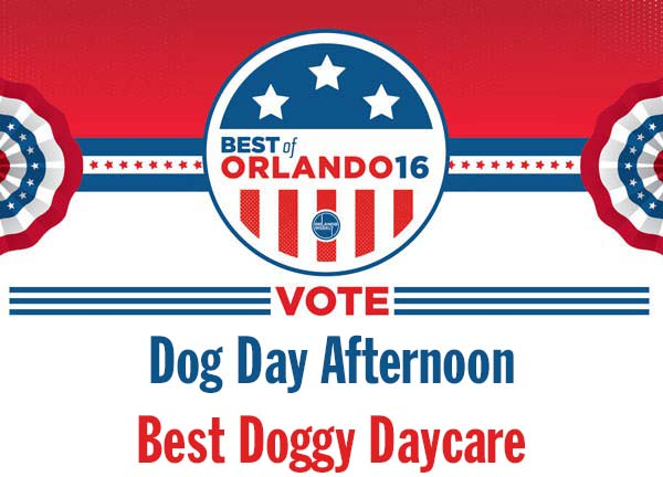 Vote for Us Here!