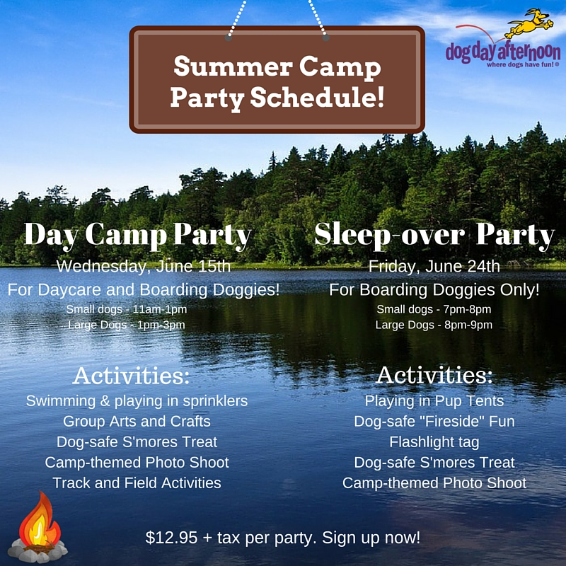 SUMMER CAMP PARTIES!!